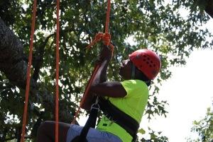 Tree Climbing at Panola State Park